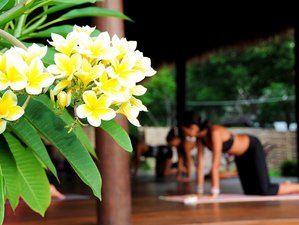 8 Days Explore Chakras Yoga Retreat in Goa, India