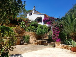 8 Day Coaching Therapy Retreat with Yoga in Nature at Coast Mallorca