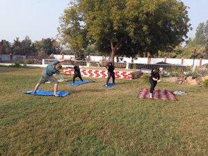 5 Day Rejuvenating Ayurveda, Naturopathy, Meditation and Yoga Retreat in Khajuraho, India
