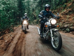 6 Day 'Sussegado Goa' Guided Motorcycle Tour through the Land of Chill in South India