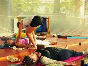 13 Tage 100-Stunden Restorative Yogalehrer Ausbildung in Gokarna