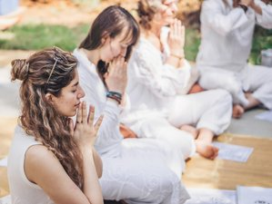 26 Tage 200-Stunden Yin Yogatherapie Lehrerausbildung in Bali