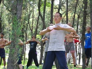 7 Days  Meditation&Tai Chi Retreat in China