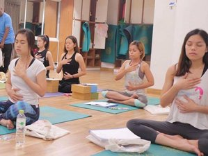 13 Day 100-Hour Pranayama and Yoga Nidra Teacher Training Course in Chiang Mai