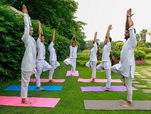 27 Day 200-Hour Yoga Teacher Training in Rishikesh