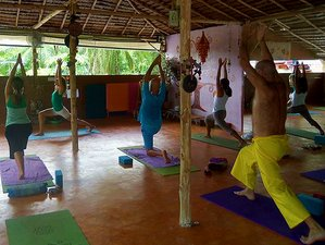3 Days Level 1 Reiki Healing & Yoga Retreat in Krabi
