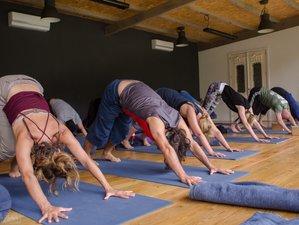 22 Days 200-Hour Functional Hatha and Vinyasa Yoga Teacher Training in Cabeceiras de Basto, Portugal