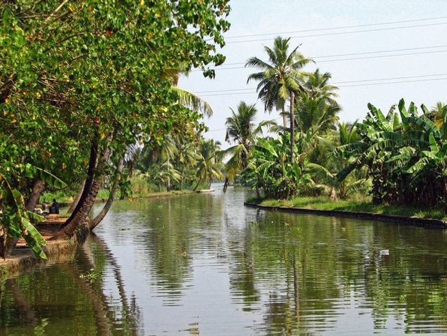 6-Daagse Solo Yoga Retreat en Meditatie in Kerala, India