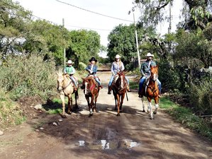 4 Day Historical Tour and Horseback Riding Holiday in Nopala, Hidalgo