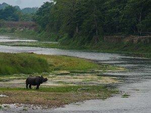 4-Daagse Chitwan National Park Safari in Subarnapur