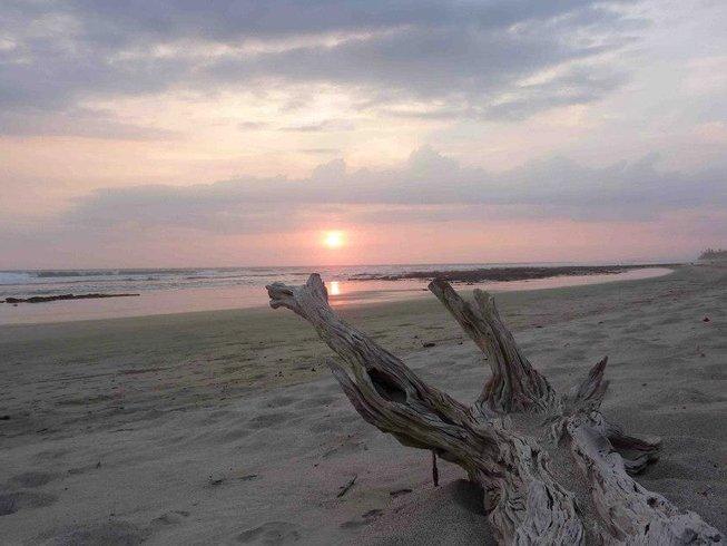 7 días de retiro de surf y yoga en Montezuma, Costa Rica