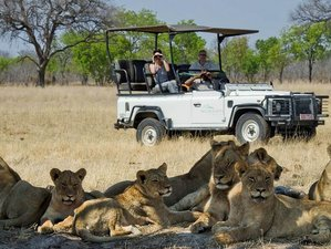 3 Days Budget Camping Safari in Hwange National Park, Zimbabwe