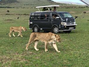 7-Daagse Betaalbare Grote Trek Safari in Kenia