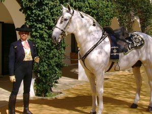 8 Day Dressage Clinic and Private Lessons with Rafael Soto in Seville