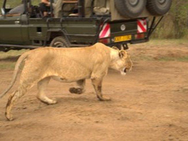3 Days Magical Maasai Mara Safari in Kenya