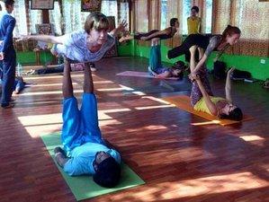 40 Tage 300Std Yogalehrerkurs für Fortgeschrittene in Rishikesh