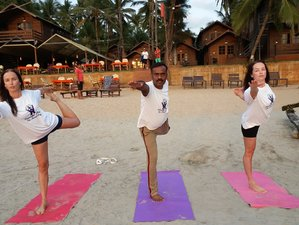 25 Day 200-Hour Online Hatha and Kundalini Yoga Teacher Training Course