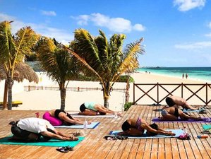 7 Day Relax and Renew Yoga Retreat with Food and Culture in Puerto Morelos, Mexico