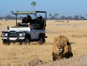 6 Days Victoria Falls Tour and Safari in Zimbabwe