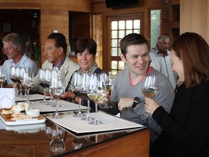 2 Day Semi Private Cooking Class and Wine Tour in Casablanca Valley, Chile