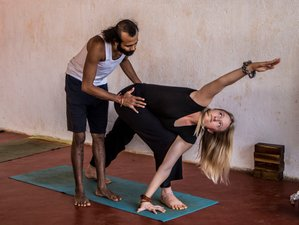 25 Day 200 Hours Vinyasa Yoga Teacher Training in Gokarna