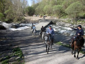 8 Day La Alpujarra Horse Riding Holiday Andalusia, Spain