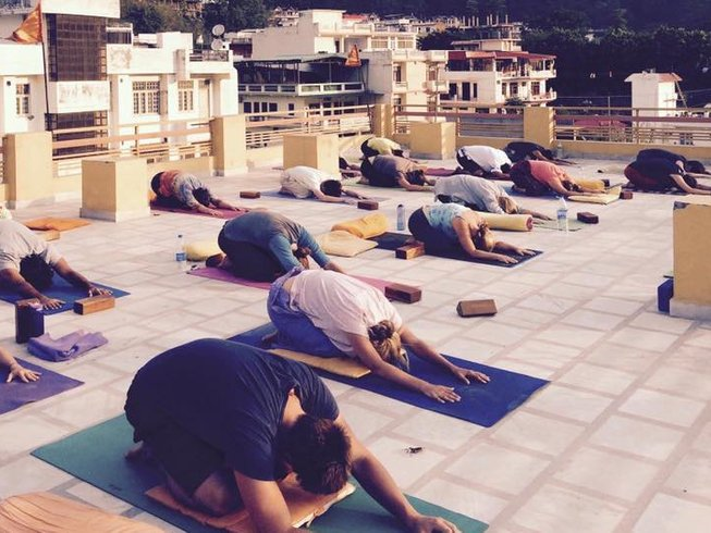 10 Days Meditation and Yoga Retreat in India