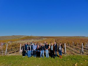 7 Day Wine, Food and Culture Tour in Bulgaria