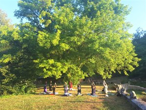 7 Day Yoga Retreat in the Champagne-Ardenne: Discover which Asana Suits You