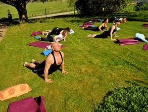 5 Days Meditation, Yoga and Nature Retreat in Sweden