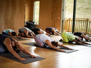 4 Day Mantra, Sound, and Yoga Retreat in New Plymouth, Taranaki