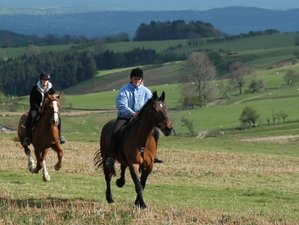 2 Days Wayfarer Trail Horse Riding Holiday in Wales, UK