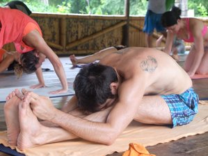 8 jours en stage de yoga personnalisé Vikara Lifestyle et surf à Olon, Équateur