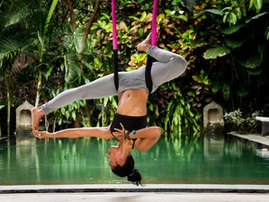 6 Days 50-Hour Fly High Yoga Level 1 Teacher Training (Aerial and Alignment based) in Ubud, Bali