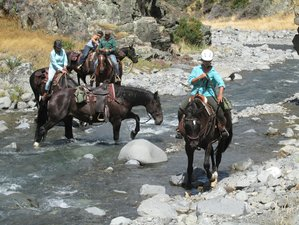 2 Days Classic South Island Trail Riding in Canterbury, New  Zealand