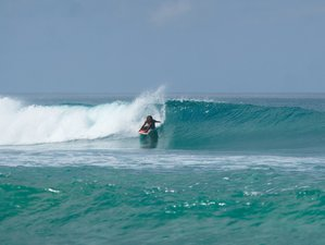 8 Day Surf Lessons Package in Santa Teresa, Puntarenas Province