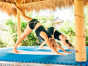 5 Days Chakra Awakening Yoga and Chanting Meditation in Bali, Indonesia