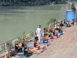 30 Days 300 Hours Advance Ashtanga Vinyasa Flow Yoga Teacher Training in Rishikesh,India