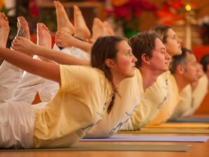 29 Days 200-Hours Yoga Teacher Training California
