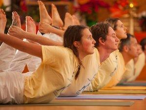 29 Tage 200-Stunden Yogalehrer Ausbildung in Kalifornien