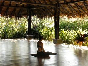 8 Day Yoga Holiday 'Free to Be' with Rachael Hunter and Rebecca Saline in Nosara