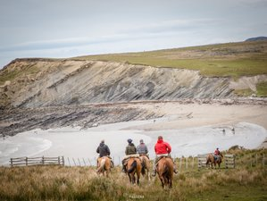 12 Day Horse Riding  and Camping Tour in the Magical Atlantic Coast of Tierra Del Fuego, Argentina