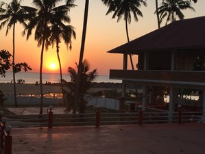 28 Day 200-Hour Ashtanga and Hatha Yoga Teacher Training Kerala