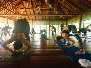 28 Days 200-Hour Yoga Teacher Training in Surat Thani, Thailand