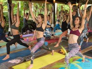 29 Day Zuna Yoga 300 Hour Yoga Teacher Training in Ubud, Bali