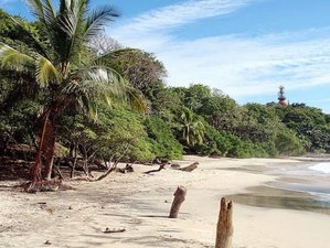 6 Day Pure Nature Yoga Beach Vacation in Nosara