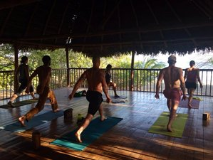 7 Days Wholesome Food & Yoga Surfing Retreat in Panama