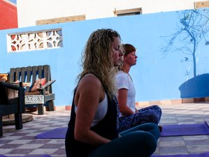 8 Day Yoga Combined with Surf Camp for Surfers of All Levels in Aourir, Agadir