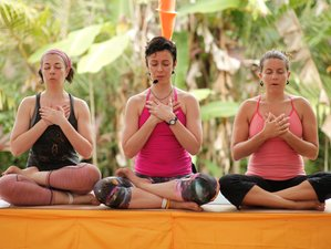 4 Days Yoga and Ayurveda Retreat in Bali