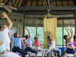 21-Daagse Yoga Retraite in Thailand